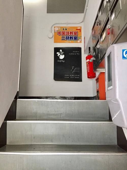 マフィンレディバグ (Muffin ladybug) 階段