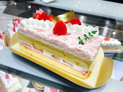 さくらと春苺のショートケーキ