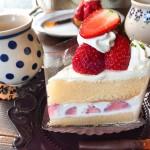 鶴舞|知る人ぞ知る!心奪われたケーキで至福のひとときを