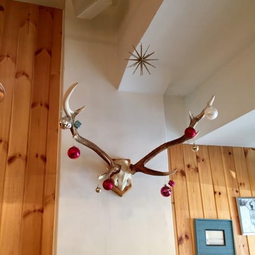 elk (エルク) 店内2