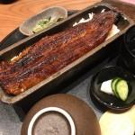 ささしまライブ|創業90年の老舗卸問屋が焼き上げる絶品の一本鰻