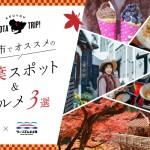 名古屋発、日帰りで紅葉を楽しむ!豊田市でオススメの紅葉スポット&グルメ3選!