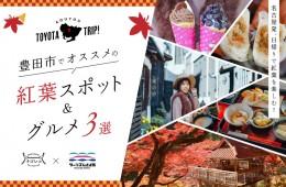 01_豊田市02