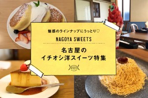 まとめ|魅惑のラインナップにうっとり♡名古屋のイチオシ洋スイーツ特集
