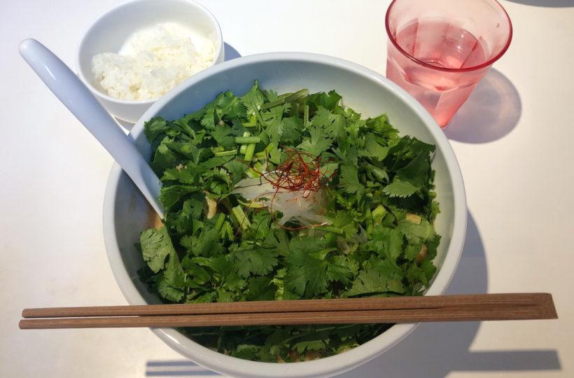 岩塚|まるでジャングル!盛り盛りパクチーを心ゆくまで食べられる味噌ラーメン専門店